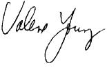 vy signature