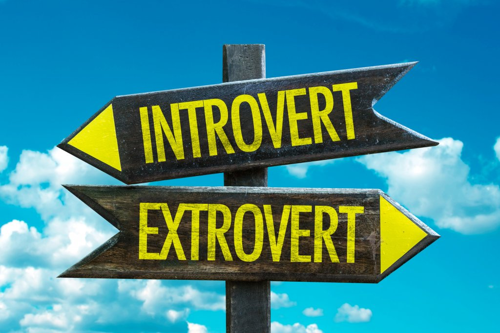 Great Home-Based Biz Ideas for Introverts